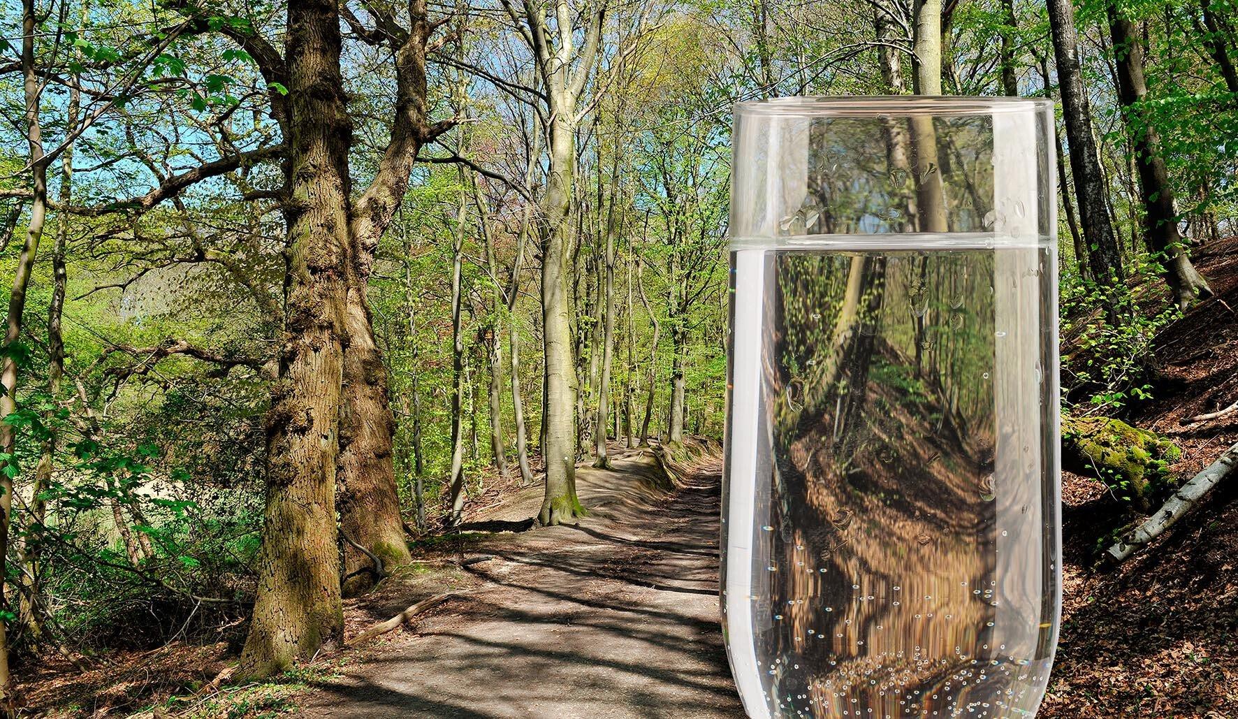 Waterbronnen Limburg Mookerhei