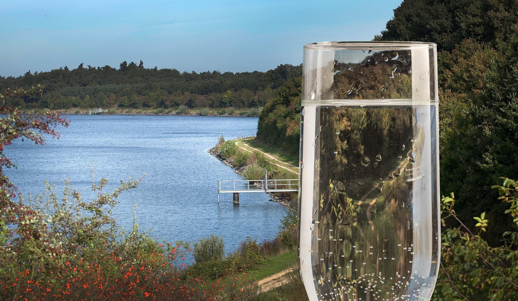 Waterbronnen Limburg Beegderheide