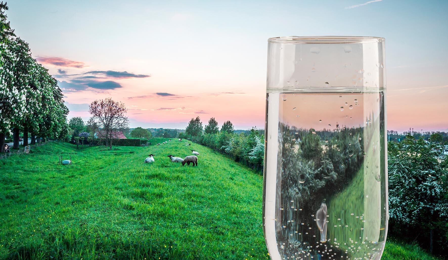 Waterbronnen Limburg Maas